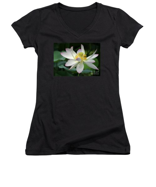 Elegant Lotus Women's V-Neck