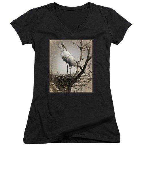 Elegant Mother Women's V-Neck T-Shirt