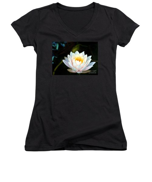 Elegant White Water Lily Women's V-Neck (Athletic Fit)