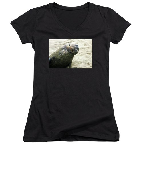 Women's V-Neck T-Shirt (Junior Cut) featuring the photograph Elephant Seal by Anthony Jones