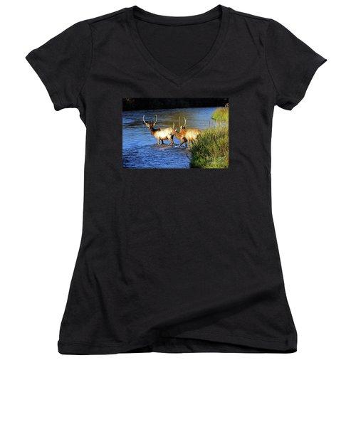 Elk Women's V-Neck T-Shirt