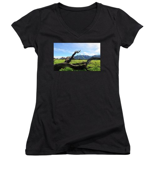 Emulating The Past Women's V-Neck T-Shirt (Junior Cut) by Donna Blackhall