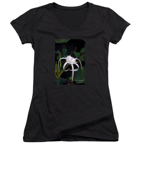 En Pointe Women's V-Neck T-Shirt (Junior Cut) by Byron Varvarigos