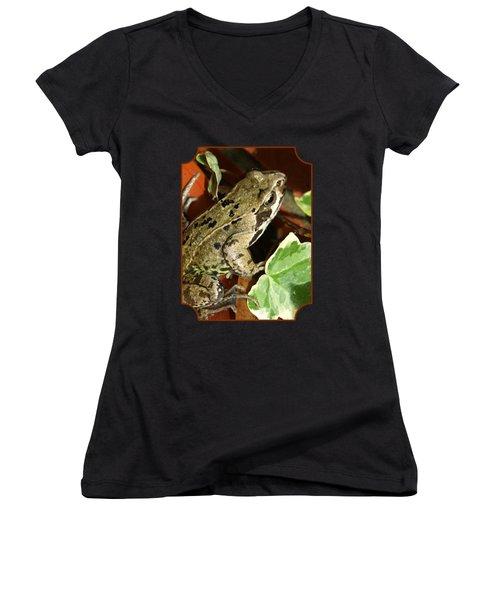 En Route To The Pond Women's V-Neck T-Shirt (Junior Cut) by Gill Billington