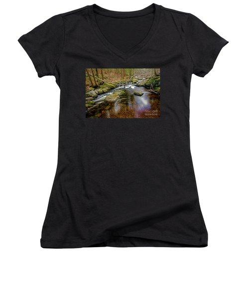 Enders Falls Women's V-Neck T-Shirt (Junior Cut) by Jim Gillen