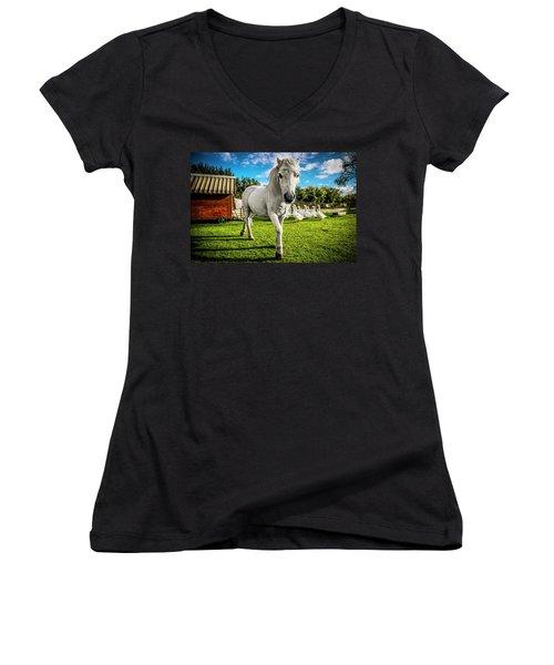 English Gypsy Horse Women's V-Neck