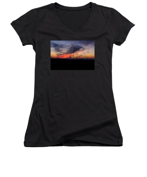 Evening Light Over Meadow Women's V-Neck