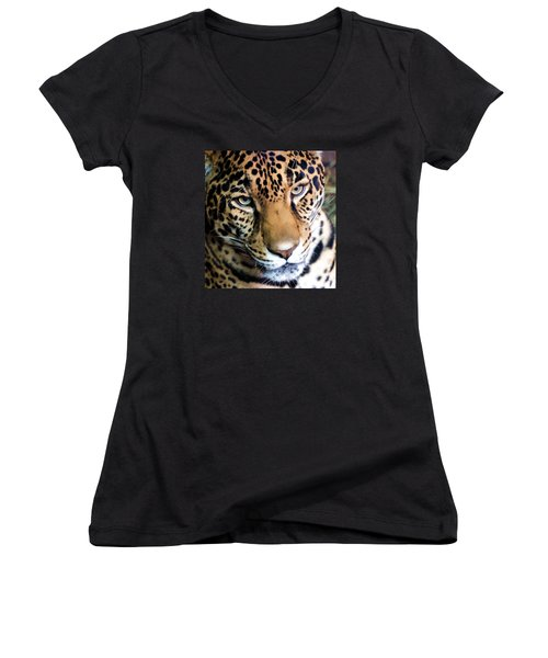 Eye Of The Leopard Women's V-Neck T-Shirt (Junior Cut) by Athena Mckinzie