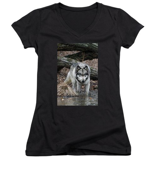 Eye On You Women's V-Neck T-Shirt