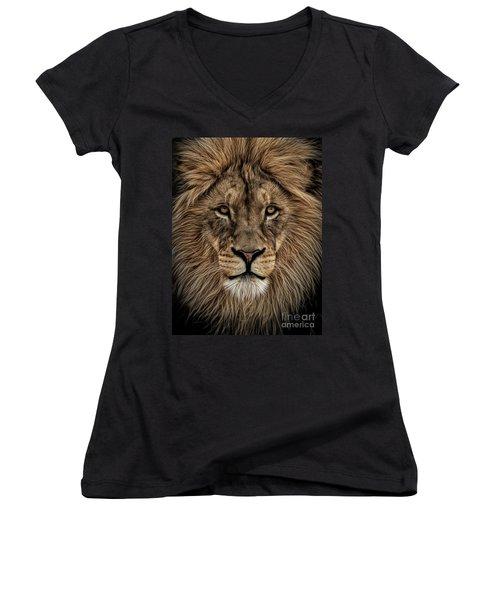 Facing Courage Women's V-Neck T-Shirt (Junior Cut) by Brad Allen Fine Art