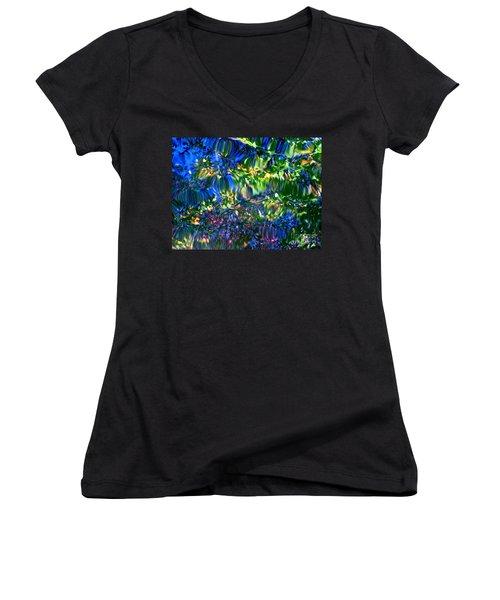 Faerie Frenzy Women's V-Neck T-Shirt