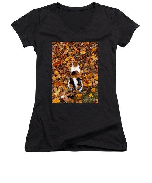 Fall Catitude  Women's V-Neck T-Shirt (Junior Cut) by Christy Ricafrente