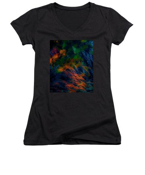 Fall Colors 2 Women's V-Neck T-Shirt (Junior Cut) by Glenn Gemmell