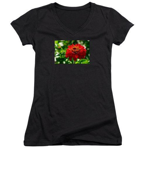 Fall Flower Women's V-Neck T-Shirt (Junior Cut) by Derek Dean