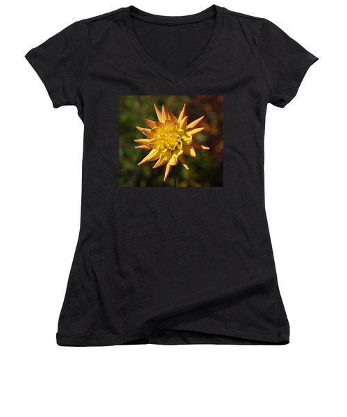 Women's V-Neck T-Shirt (Junior Cut) featuring the photograph Fall Flower by Richard Bryce and Family