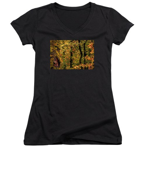 Fall Is Coming Women's V-Neck