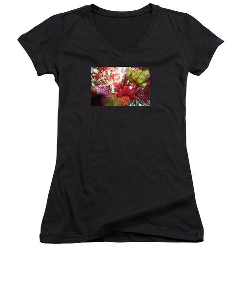 Fall Leaves Design 2 Women's V-Neck T-Shirt