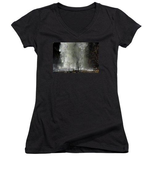 Falling Waters Women's V-Neck T-Shirt