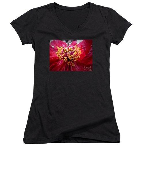 Fancy  Women's V-Neck T-Shirt (Junior Cut) by Christy Ricafrente