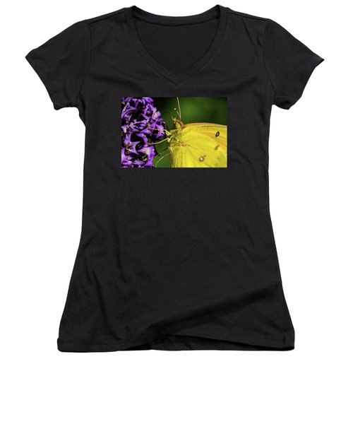 Women's V-Neck T-Shirt (Junior Cut) featuring the photograph Feeding Butterfly by Jay Stockhaus