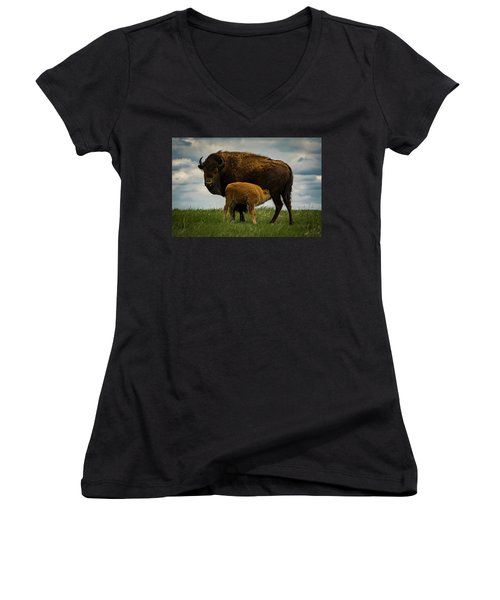 Women's V-Neck T-Shirt featuring the photograph Feeding Time II by Gary Lengyel