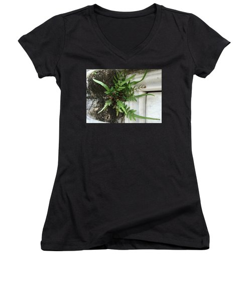 Women's V-Neck T-Shirt (Junior Cut) featuring the painting Fern by Kim Nelson