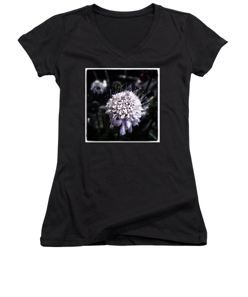 Women's V-Neck featuring the photograph Field Scabious. A Member Of The by Mr Photojimsf