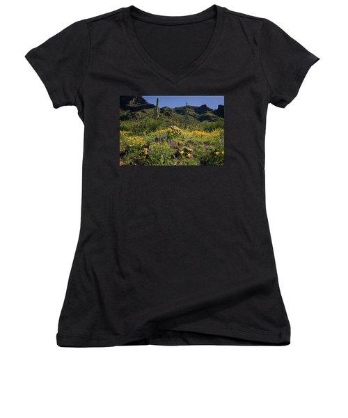 Fields Of Glory Women's V-Neck T-Shirt (Junior Cut) by Lucinda Walter