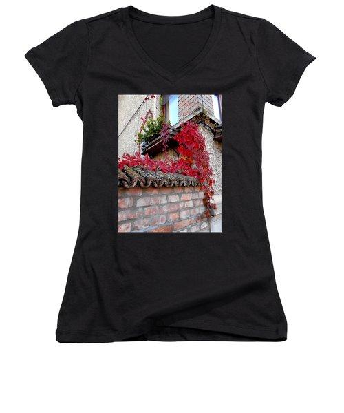 Fifty Shades Of Autumn - 12. Women's V-Neck T-Shirt