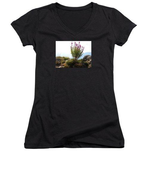 Fireweed Epilobium Angustifolium Women's V-Neck T-Shirt (Junior Cut) by Ernst Dittmar