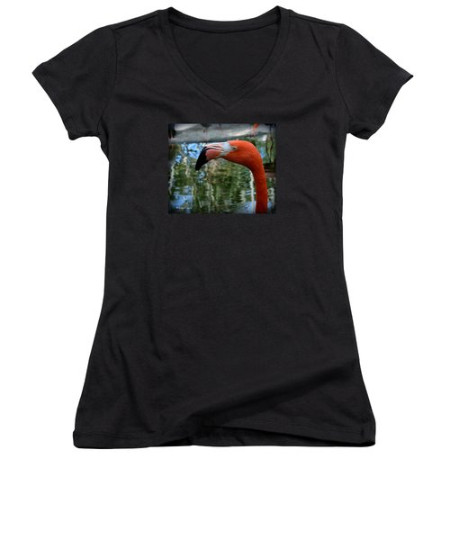 Flamingo Women's V-Neck T-Shirt (Junior Cut) by Edgar Torres