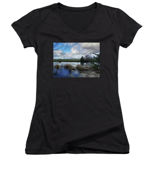 Flooding River, Field And Clouds Women's V-Neck T-Shirt (Junior Cut) by Chriss Pagani