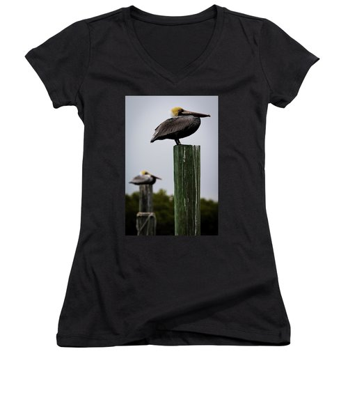 Florida Brown Pelican Women's V-Neck (Athletic Fit)