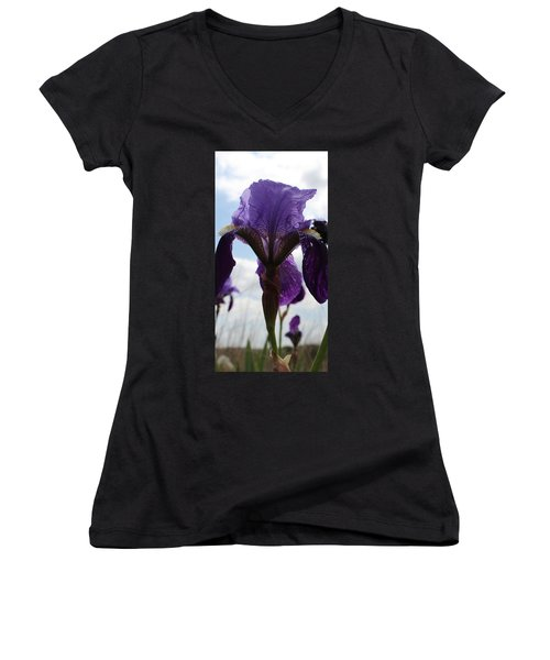 Meadow Flowers Women's V-Neck T-Shirt