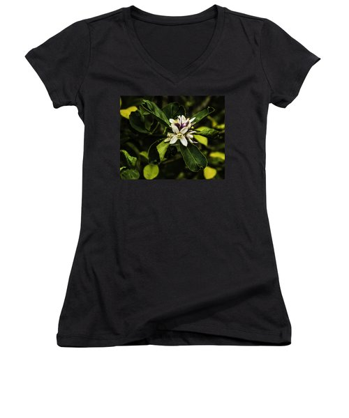 Flower Of The Lemon Tree Women's V-Neck