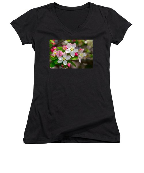 Flowering Cherry Tree Blossoms Women's V-Neck (Athletic Fit)