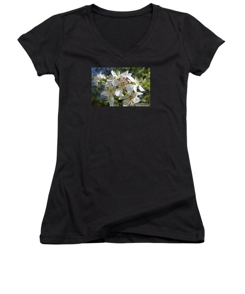 Flowering Of White Flowers 2 Women's V-Neck