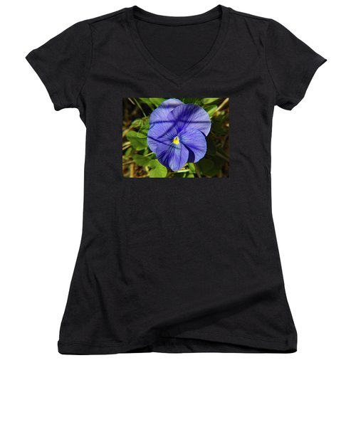 Flowering Pansy Women's V-Neck