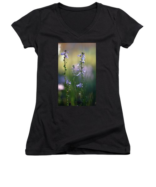 Flowers By The Pond Women's V-Neck T-Shirt (Junior Cut) by Robert Meanor