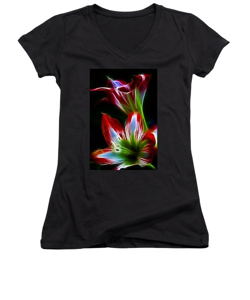 Flowers In Green And Red Women's V-Neck T-Shirt