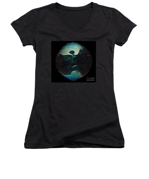 Fluid Evolution Women's V-Neck T-Shirt