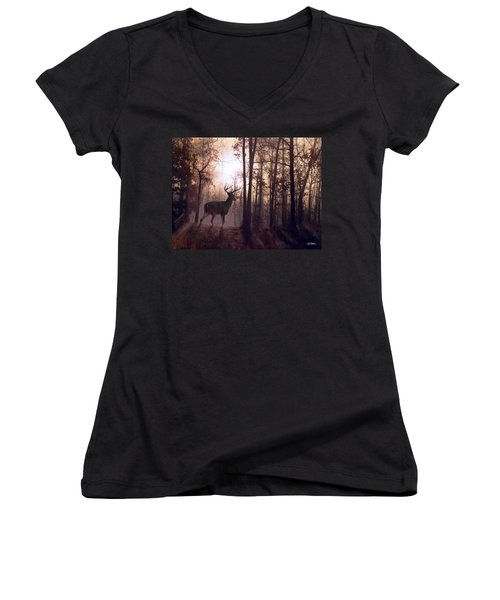 Foggy Morning In Missouri Women's V-Neck T-Shirt