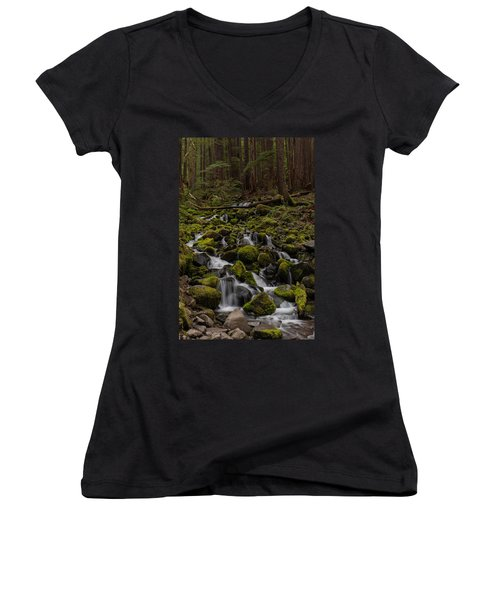 Forest Cathederal Women's V-Neck T-Shirt (Junior Cut) by Mike Reid