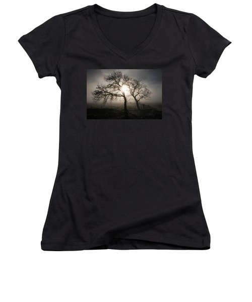 Women's V-Neck T-Shirt featuring the photograph Forever Buddies by Jeremy Lavender Photography
