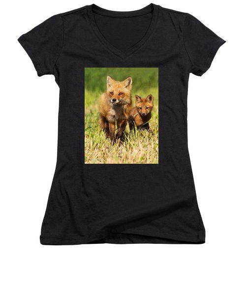 Fox Family Women's V-Neck T-Shirt (Junior Cut) by Mircea Costina Photography