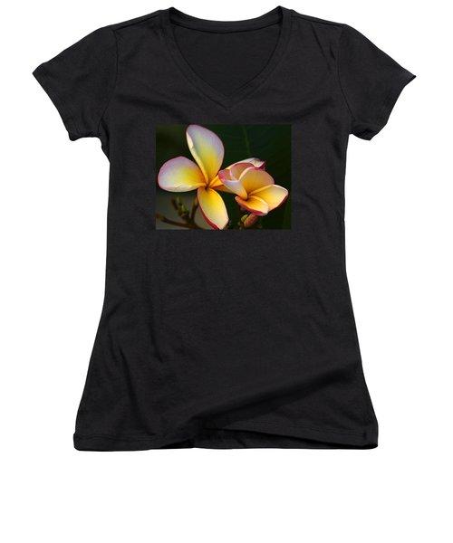 Frangipani Flowers Women's V-Neck T-Shirt (Junior Cut) by Ralph A  Ledergerber-Photography