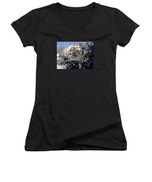 Fresc Snow Women's V-Neck T-Shirt