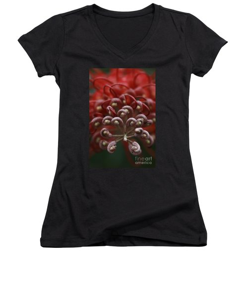 Women's V-Neck T-Shirt (Junior Cut) featuring the photograph Friendly Foe by Stephen Mitchell