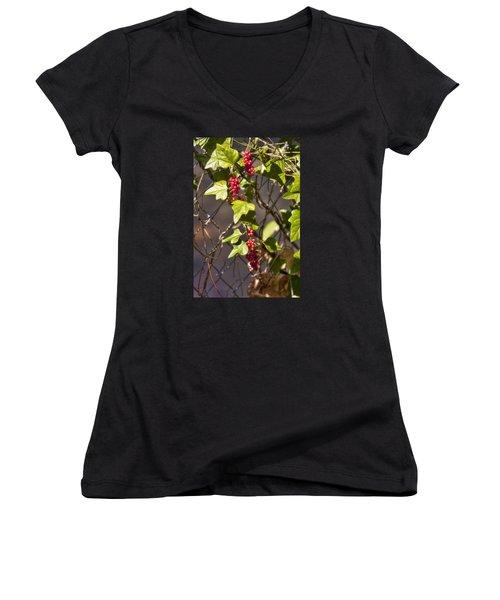 Women's V-Neck T-Shirt (Junior Cut) featuring the photograph Fruits Of Autumn by Joan Bertucci