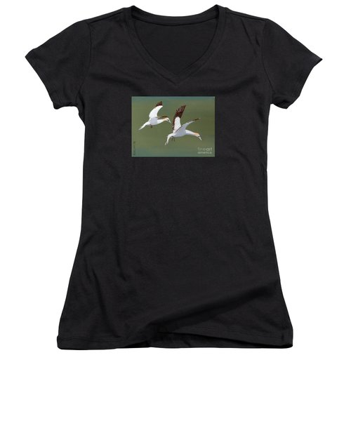 Gannets - Painting Women's V-Neck T-Shirt (Junior Cut) by Veronica Rickard